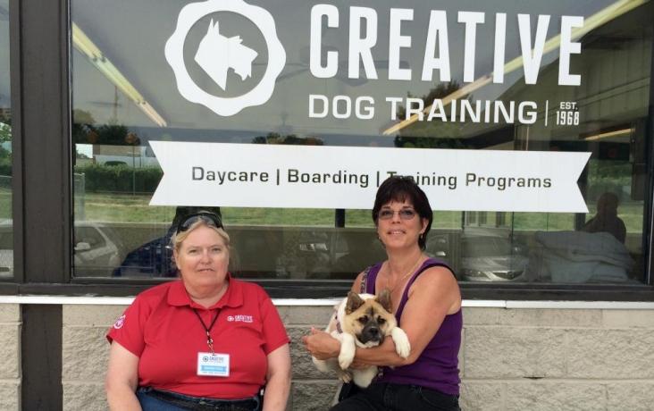 Creative Dog Training Blog